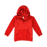 Gymboree Boys Two Tone Hoodie Sweatshirt