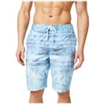 Speedo Mens Palm Striped Swim Bottom Board Shorts
