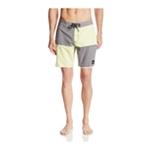 Quiksilver Mens Dane Swim Bottom Board Shorts