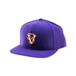 Black Scale Mens The VS Snake Snapback Baseball Cap