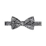 Countess Mara Mens Paisley Bow Tie