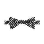 Countess Mara Mens Stripe Bow Tie