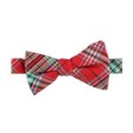 Countess Mara Mens Plaid Bow Tie