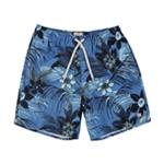 Quiksilver Mens Seasalt Volley Swim Bottom Trunks