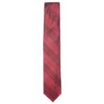 Ryan Seacrest Mens Riverside Self-tied Necktie