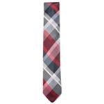 Ryan Seacrest Mens Plaid Self-tied Necktie