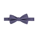 Ryan Seacrest Distinction Mens Beverly Neat Bow Tie