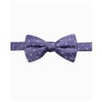Ryan Seacrest Distinction Mens Burke Dot Necktie