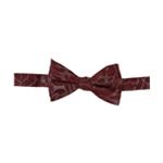 Alfani Mens Pre-Tie Metallic Bow Tie