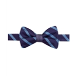 Ryan Seacrest Distinction Mens Stripe Dot Bow Tie