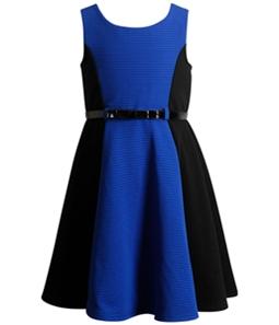 Sweet Heart Rose Girls Colorblock Ponte A-line Dress