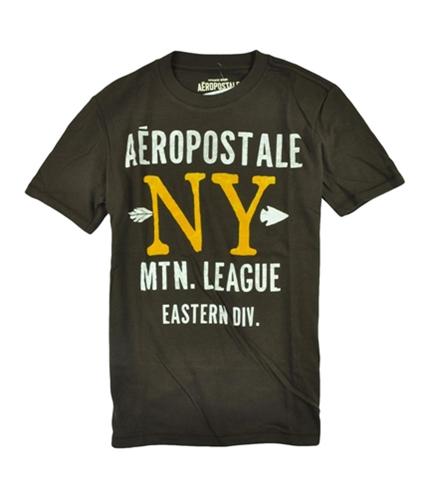 Aeropostale Mens Felt Finish New York Graphic T-Shirt browns XS