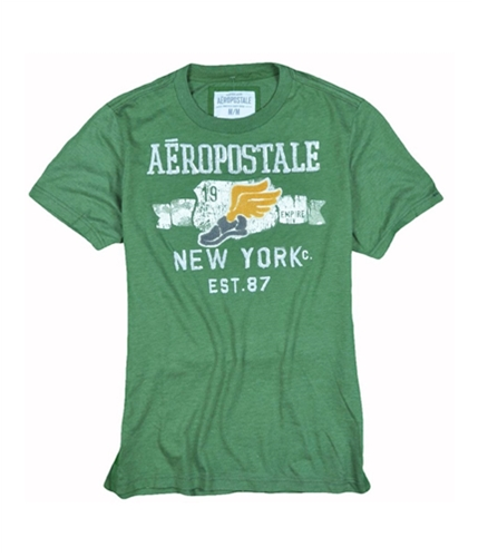 Aeropostale Mens Wings Embroidered Graphic T-Shirt chivegreen M